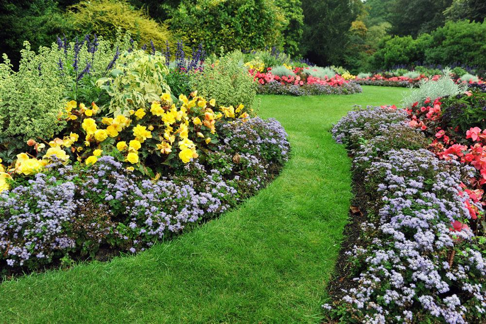 Working with a Landscape Pro? 5 Things to Know in Prior