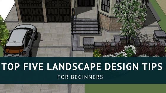 Landscape Design: Best Tips for Beginners (Idea+Guide)