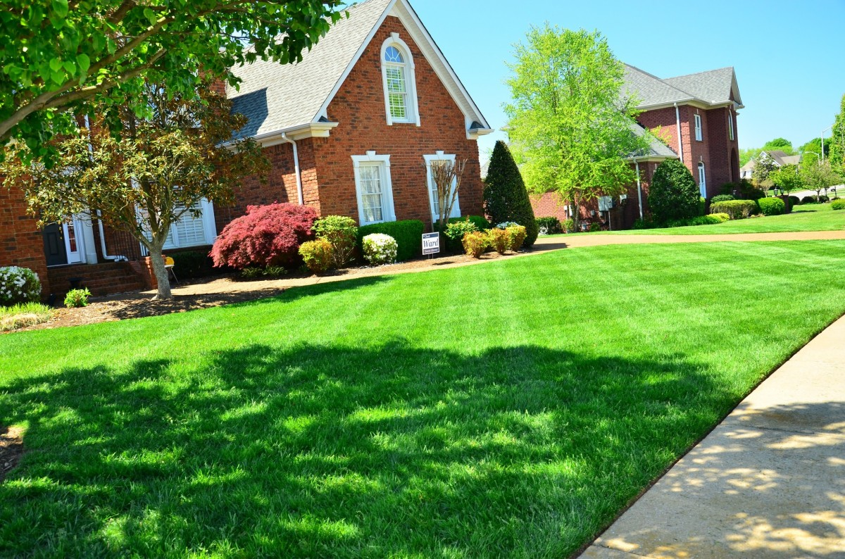 7 Things Your Landscape Designer & Architect Want You to Know
