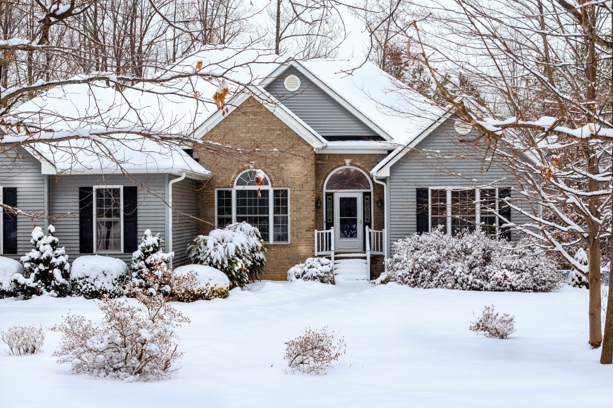 Taking Care of Your Landscape in Winter